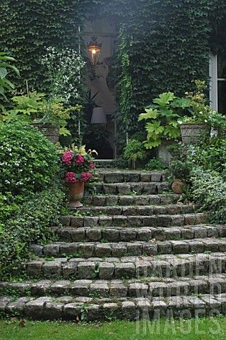 Pretty Garden Steps! More
