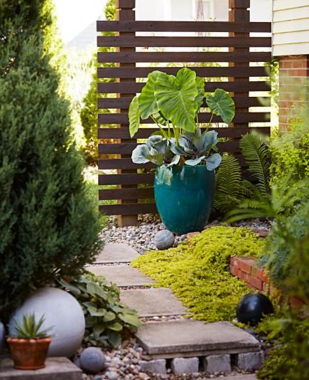 More 5 Fantastic Simple Home Garden Design: 311 Best Container Gardens Images On Pinterest