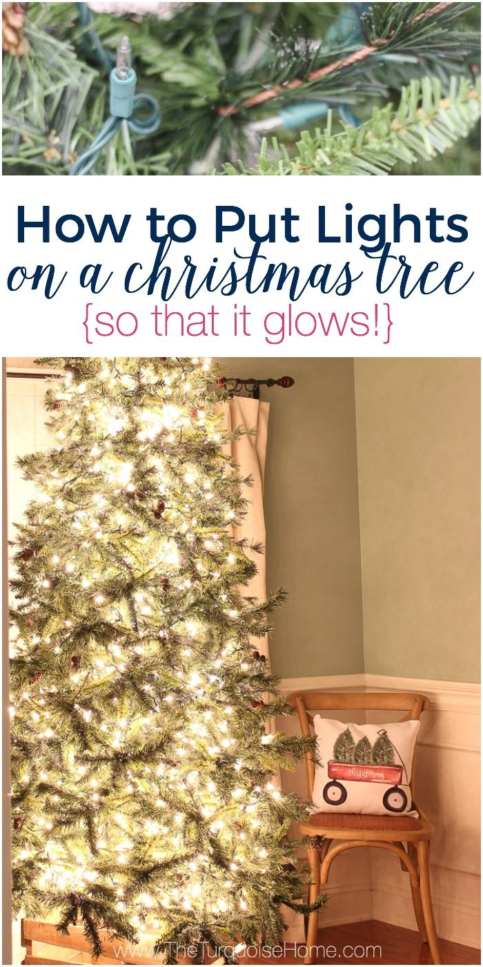 382 best Christmas Natural Decorating images on Pinterest   Merry ...