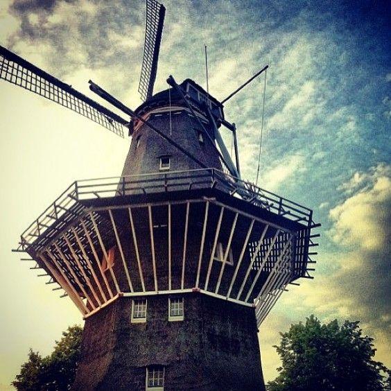 biskolik-moulin-à-vent-564x564