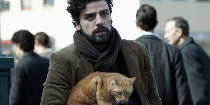 Llewyn es un músico buscando fama en Nueva York de los años 60. No tiene dinero, su amigo se suicidó, su novia está embarazada y encima le encargaron que cuide a un gato. Claro que suena muy trágico, pero los hermanos Coen lograron darle a esta historia un tono cómico (y a la vez muy oscuro).