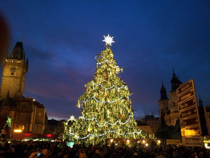 Vánoční strom na Staroměstském náměstí v Praze. Christmas tree in Old Town Square in Prague (CZ). 2013