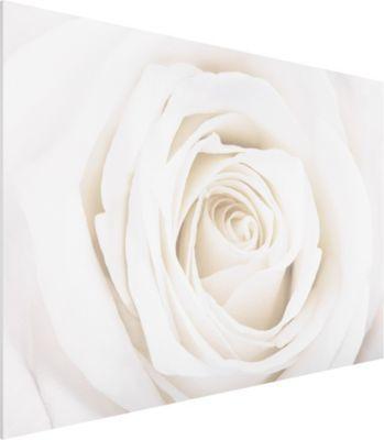 Die besten 25+ Rosen bilder Ideen auf Pinterest Rosa - rose aus stein deko