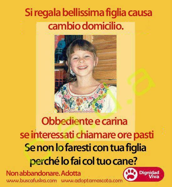 """""""Si regala bellissima #figlia causa cambio #domicilio"""" Campagna anti #abbandono  #animali #cani #gatti"""