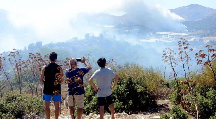 """Bodrum ve Silivri 'de yangın: 12 hektarlık alan kül oldu  """"Bodrum ve Silivri 'de yangın: 12 hektarlık alan kül oldu"""" http://fmedya.com/bodrum-ve-silivri-de-yangin-12-hektarlik-alan-kul-oldu-h49224.html"""