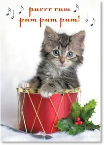572 best Christmas Holiday Cats images on Pinterest | Christmas ...