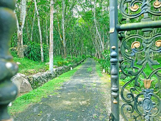 Plantation Villa Ayurveda and Yoga Resort Sri Lanka