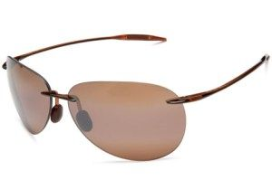 Top 10 Best Sunglasses for Women in 2016 Reviews - AllTopTenBest
