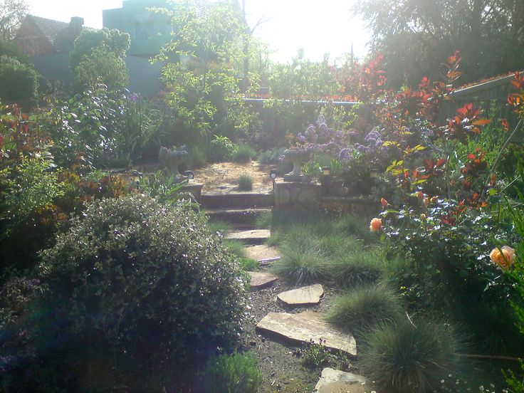 Hidden up the garden path. Multi level gardens add interest and intrigue. We love working in beautiful spaces