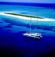 great barrier reef michaelmas cay - Google Search