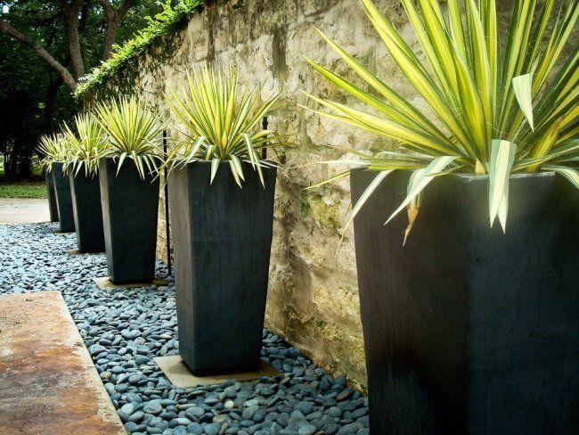 grands pots à fleurs extérieurs coniques carrés et yuccas