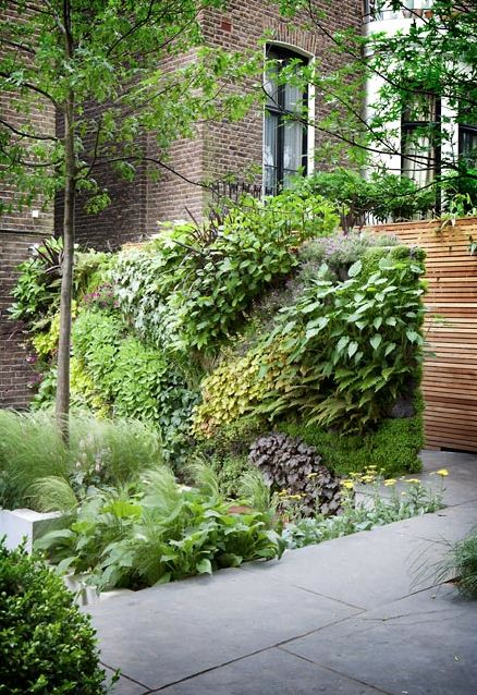 vertical garden by The Landscape Architect