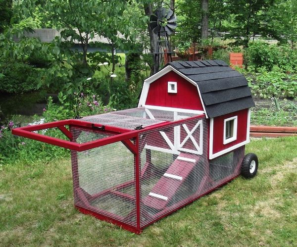 Love it, a tractor coop that you can reposition over fresh grass as needed. This one accomodates up to 4 chickens.