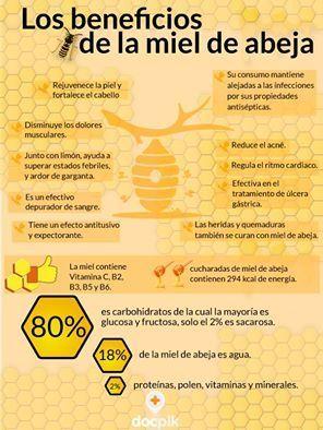 beneficios de la miel - Buscar con Google