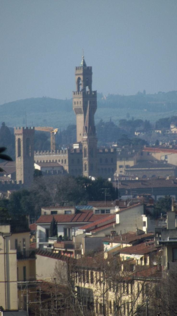 Firenze, marzo 2014. A pochi minuti a piedi dal centro, in. Zona Cure, si può vedere questo splendore