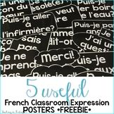 French Classroom Expressions: French Posters Freebie