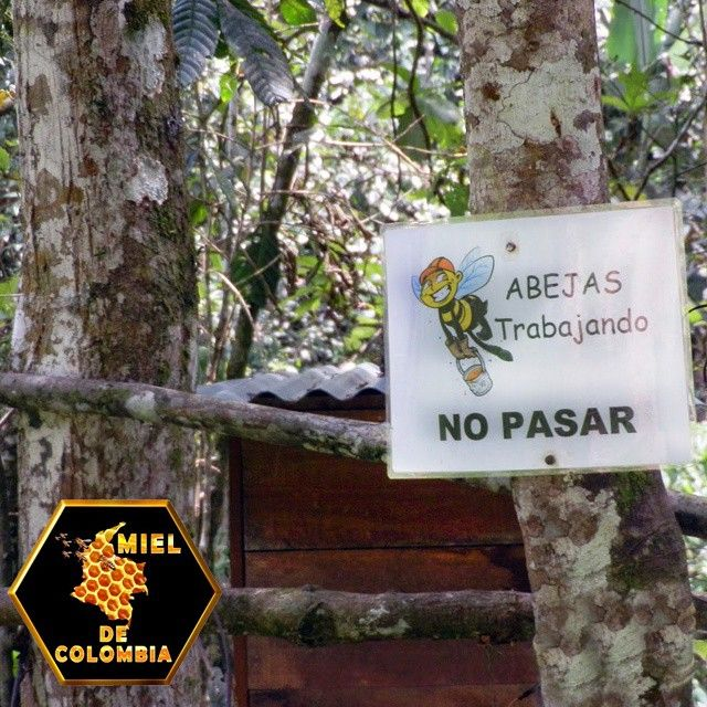 Nuestros apiarios cuentan con senalizacion y marcacion de rutas de evacuacion. Pedidos: 3012020777 - 3117402833
