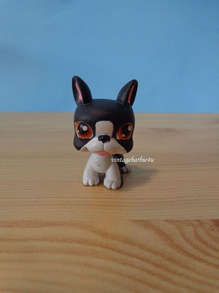 Littlest Pet Shop LPS Black White Boston Terrier #63 Ultra Rare Portable Pet Dog #Hasbro