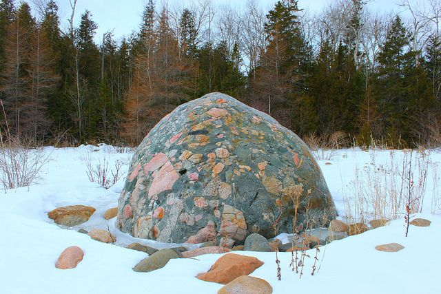 pudding stone...had one just like this in my rock garden only mine was much, much smaller