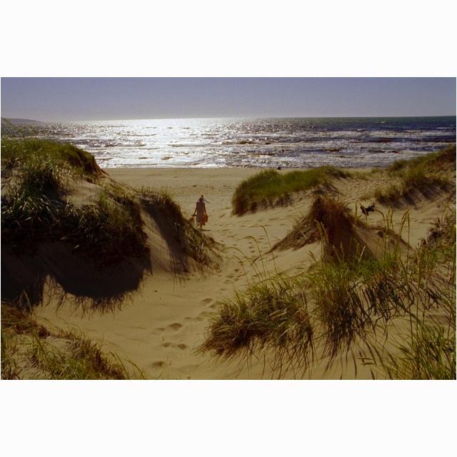 My favourite Swedish beach (Mellbystrand)