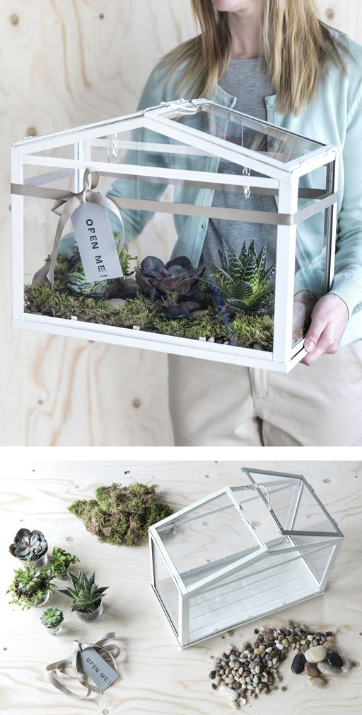 A woman carries an IKEA SOCKER greenhouse filled with moss and succulents.
