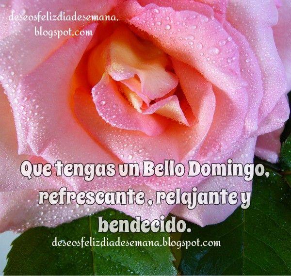 Centro Cristiano para la Familia: Que Tengas un Bello y Feliz Domingo Bendecido  Que...