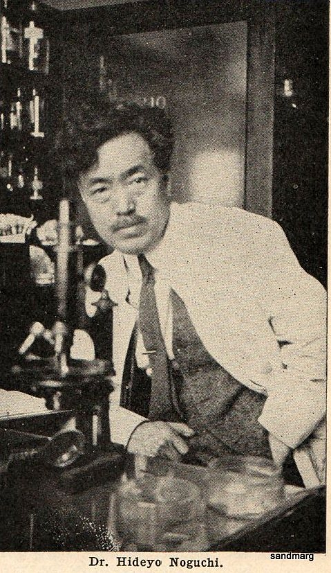 Hideyo Noguchi, a prominent Japanese bacteriologist who discovered the agent of syphilis as the cause of progressive paralytic disease in 1911.