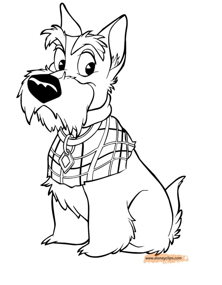 Jock from lady and the tramp