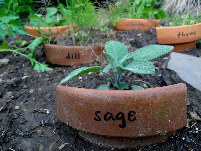 Recyclage de pots en terre cuite cassée pour marquer un jardin d'herbes aromatiques - Upcycled cracked terra cotta planter into herb garden