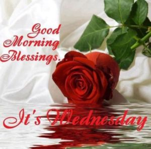 Best Happy Wednesday Morning Images and Messages