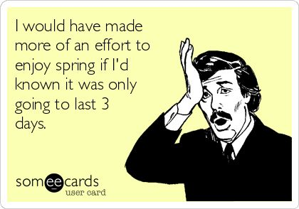 I would have made more of an effort to enjoy spring if Id known it was only going to last 3 days.