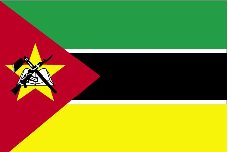 Country Flags: Mozambique FlagFLAGS OF THE WORLD : More Pins Like This At FOSTERGINGER @ Pinterest