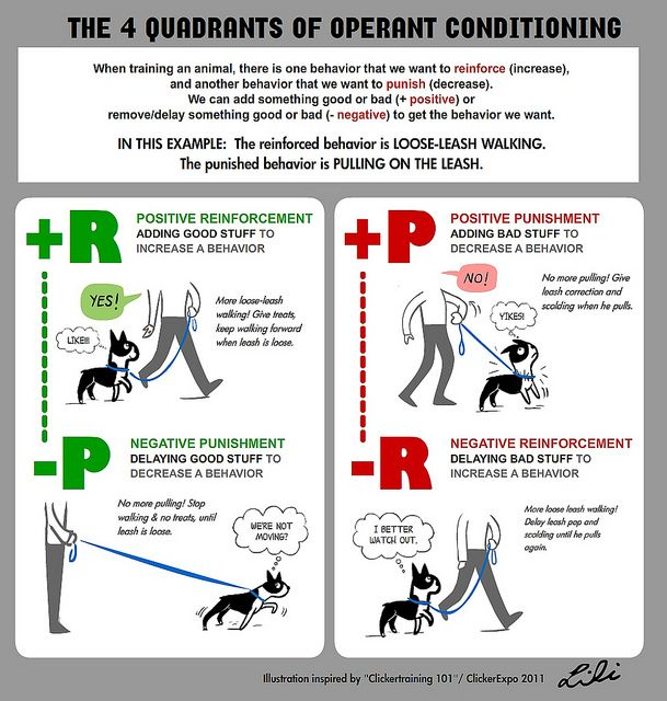 Operant Conditioning Examples Worksheet