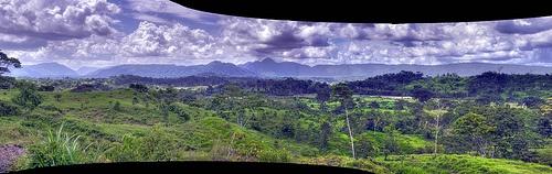 Selva Lacandon hdr