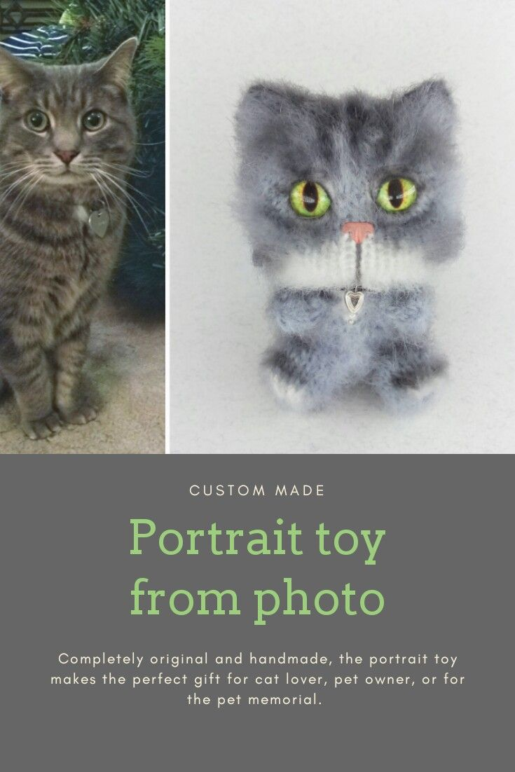 Custom Pet Portrait Toy Cat Art Plushie Chibi Birthday Gift Memorial Gifts For Loss