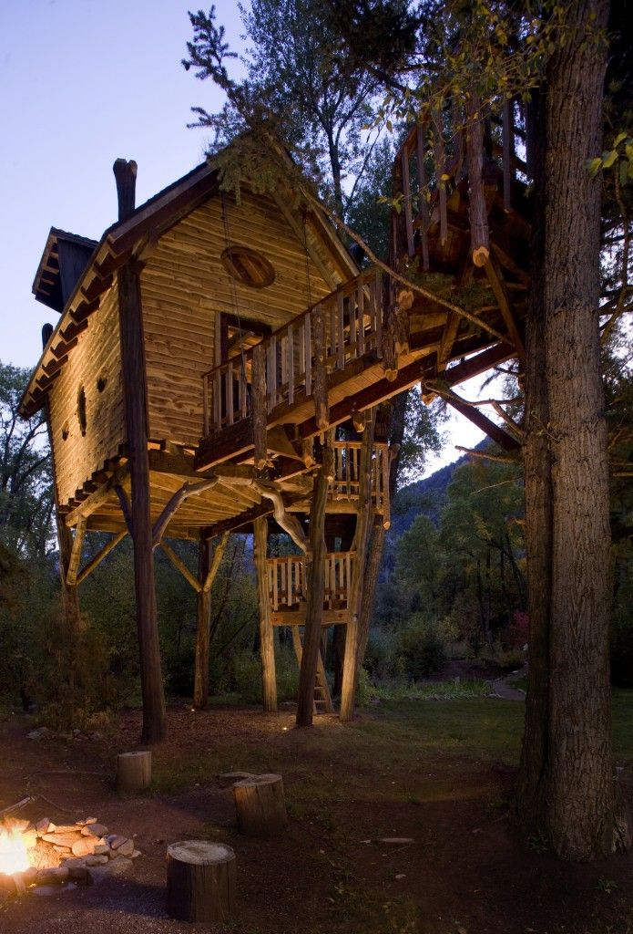 Best Tree Houses Images On Pinterest Architecture Diy Tree - Contemporary banyon treehouse california
