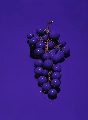 #Fotochannels #Grapes #Violet http://fotochannels.com/zoom/CRB0095506/