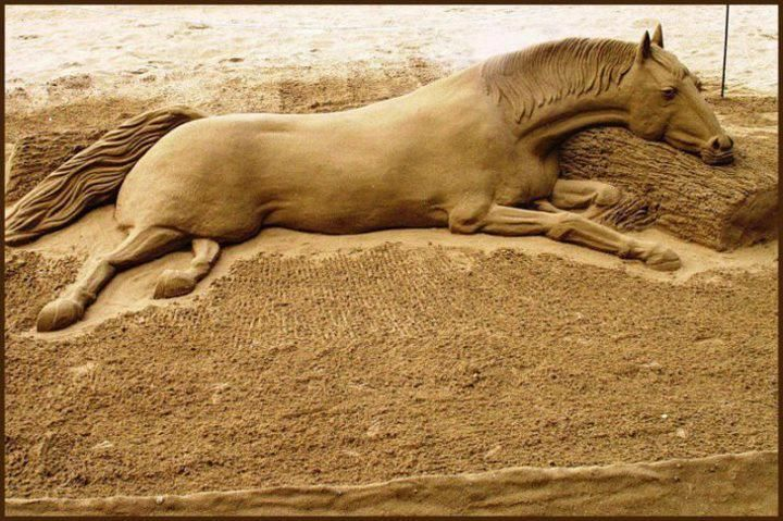 I've always loved horses. This sand sculpture's really nice.Sandsculptures, Hors Sculpture, Walleye, Horses Sculpture, Funny Photos, Photos Art, Sands Sculpture, Sands Art, Sculpture Art