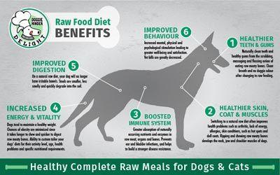 Raw Food Diet Cleanse