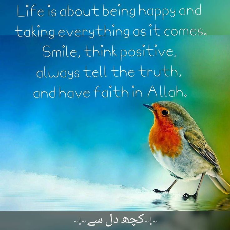 Life is about being happy and taking everything as it comes. Smile think positive always tell the truth and have faith in Allah.  #quotes  #lifequotes  #lifelessons  #happiness  #positivity  #smile  #truth  #faith