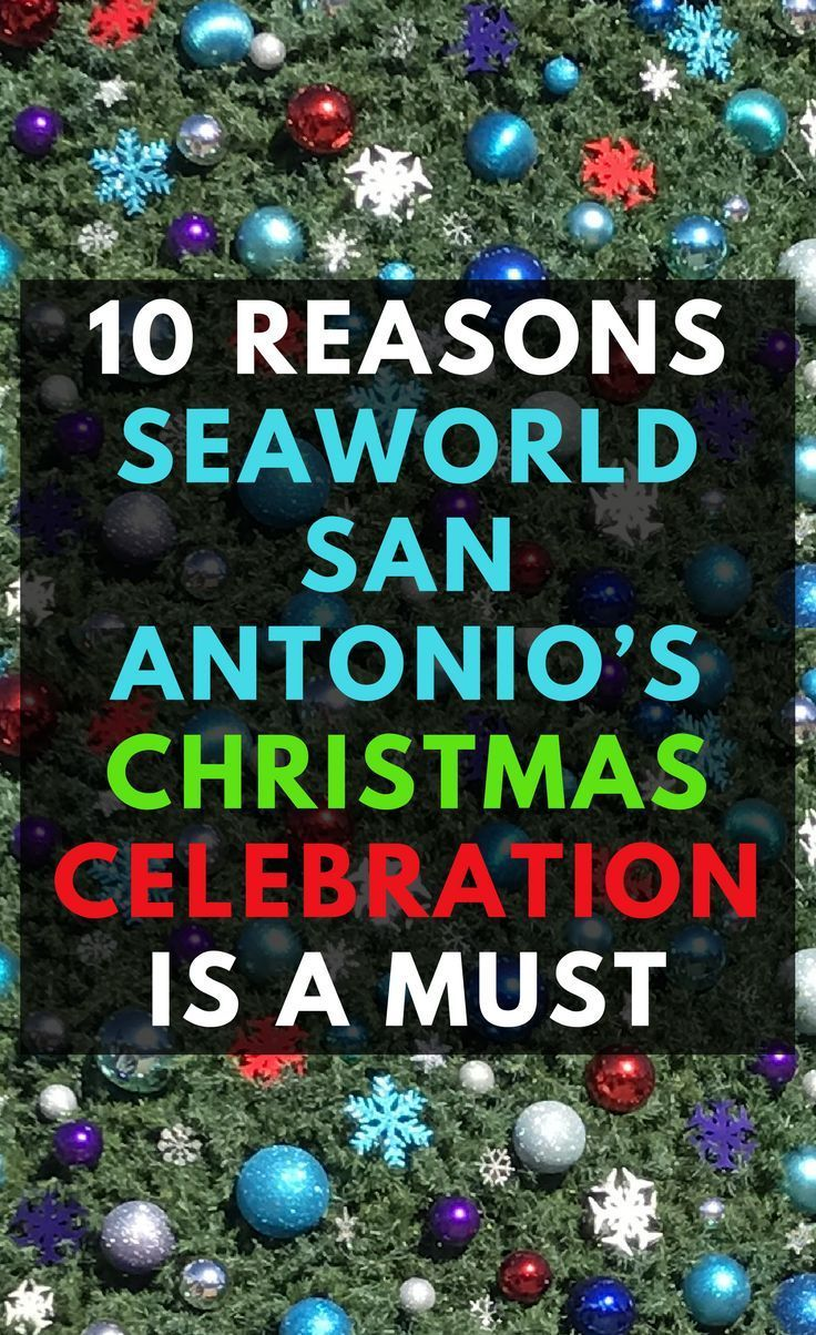 10 Reasons Seaworld S Christmas Celebration San Antonio Is A