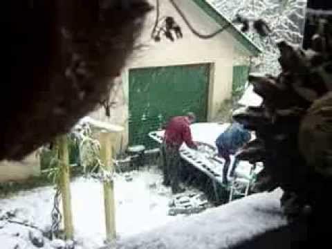 October Waltz in the Snow