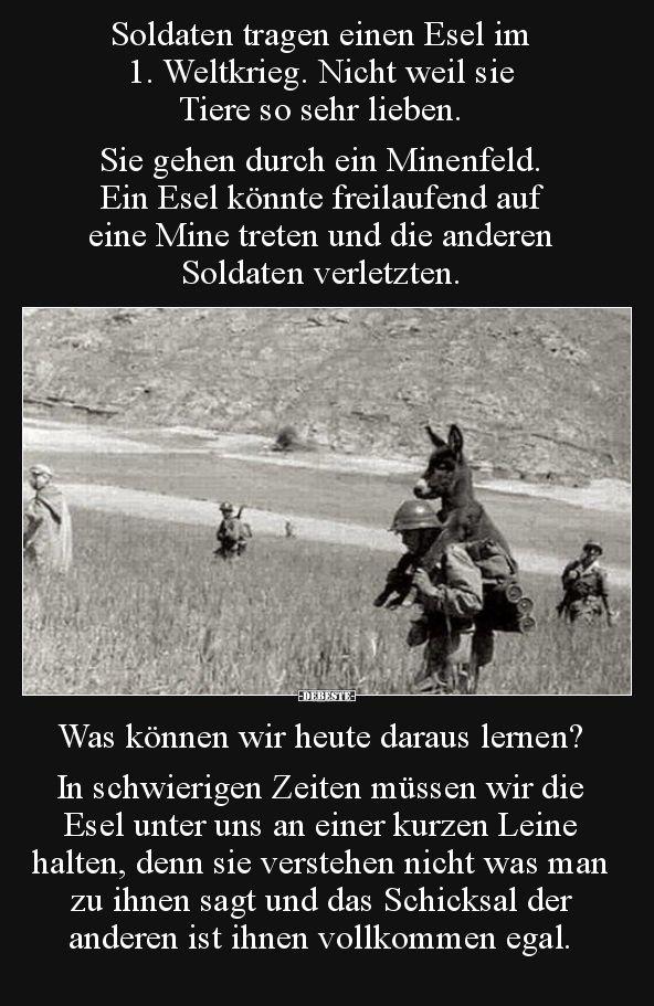 Soldaten Tragen Einen Esel Im 1 Weltkrieg Lustige Bilder Spruche Witze Echt Lustig Nachdenkliche Spruche Tiefsinnige Spruche Witzige Bilder Spruche