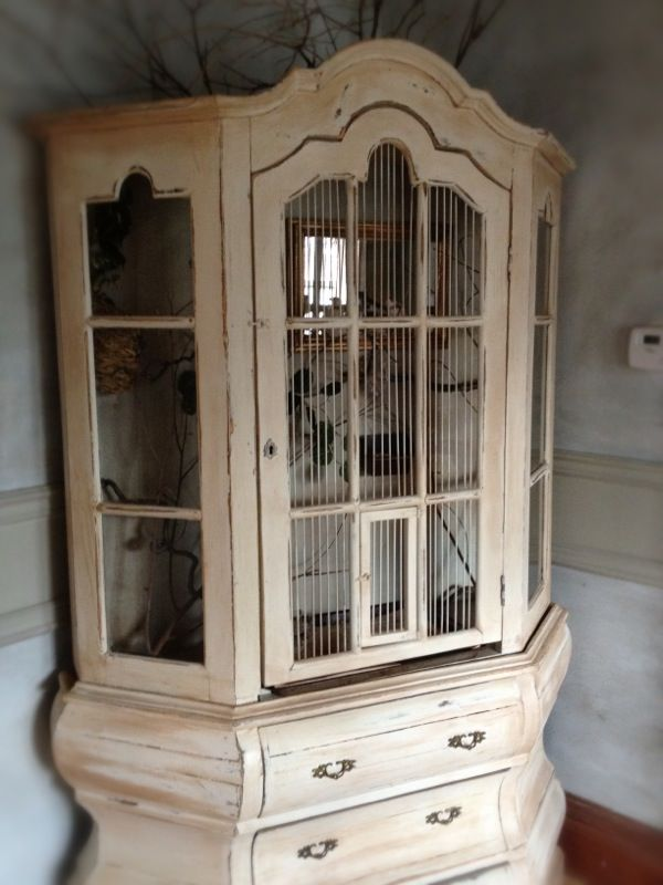 hutch to birdcage - i'd do it in a light orange colour and spraypaint the fittings gold