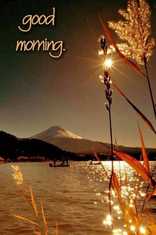 90 Good Morning Nature Ideas Good Morning Good Morning Greetings Good Morning Nature