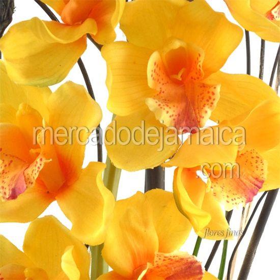 Flores Finas Orquideas| Envia Flores