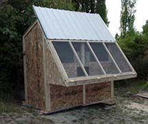 starter pigeon loft