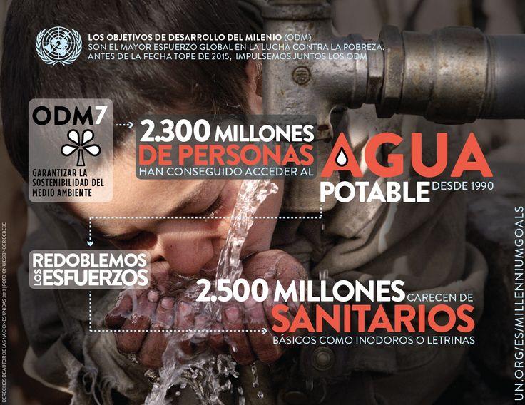 Infografía de los Objetivos de Desarrollo del Milenio (ODM) 7