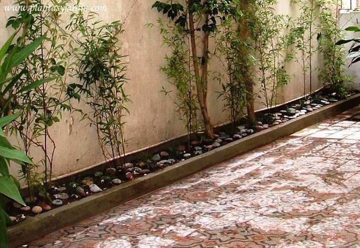 43 best images about patio on pinterest backyard patio for Plantas para patios