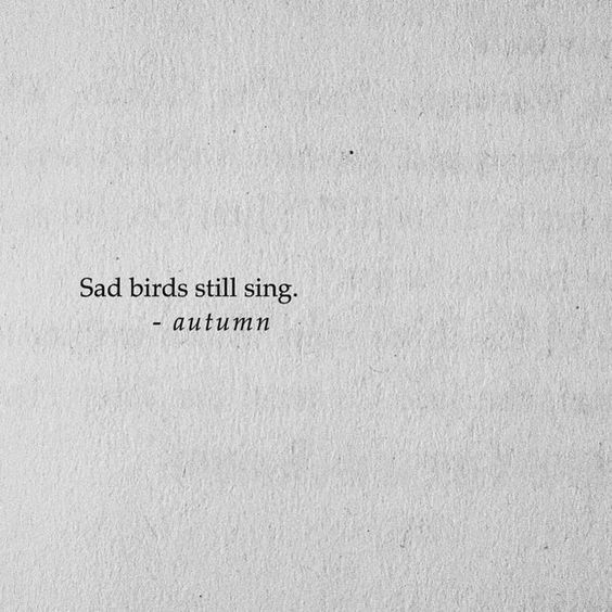 sad birds still sing #quotesdeep – #Birds #fly #quotesdeep #sad #sing